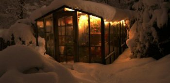 Climate controlled greenhouse with redwood framing in the snow at night.