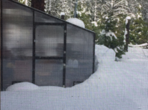 Our DIY aluminum greenhouse kits are perfect for gardening in the snow or any weather conditions.