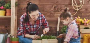 Seasonal Gardening Tips for Spring